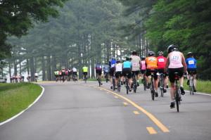 Natchez Trace Century Ride @ Ridgeland | Mississippi | United States